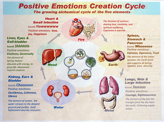 positive emotion Chapter 20 the paradoxical effects of pursuing positive emotion when and why wanting to feel happy backfi res brett q ford & iris b mauss.